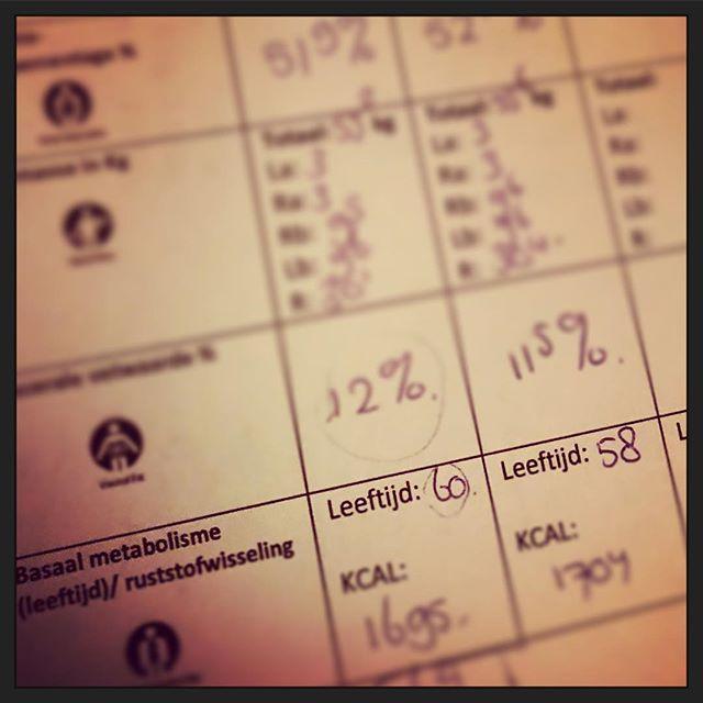 14 dagen een personal trainer en het werkt nu al - CreativeHealth.nl